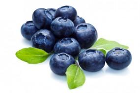 Herrlan Premium Liquid Blaubeere Heidelbeere